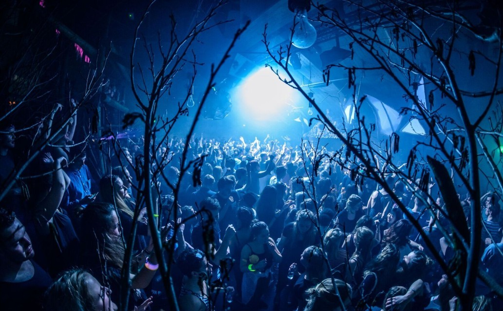 Into The Woods announces full line-up for its ADE day and night program